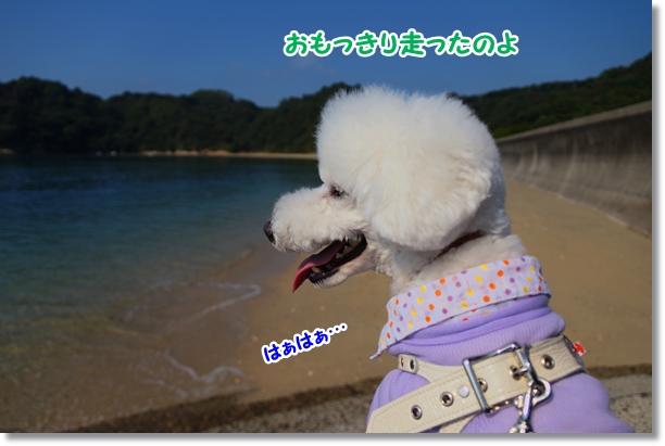 海でダッシュ♪3