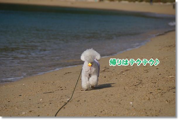 海でダッシュ♪4