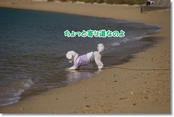 海でダッシュ♪5