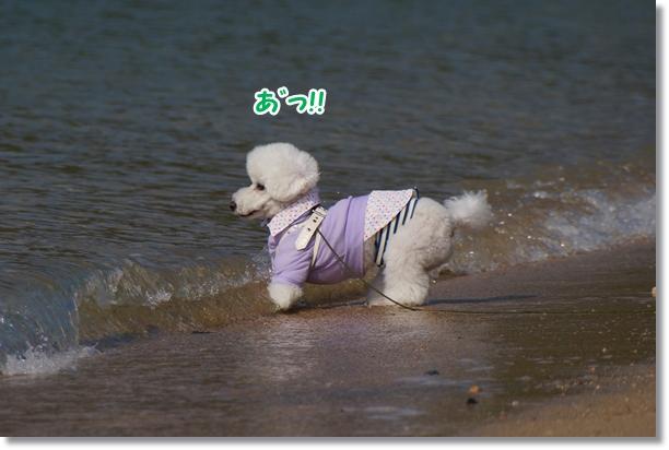 海でダッシュ♪6
