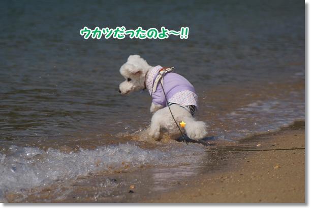 海でダッシュ♪7