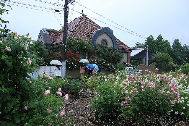 IMG_0886薔薇館