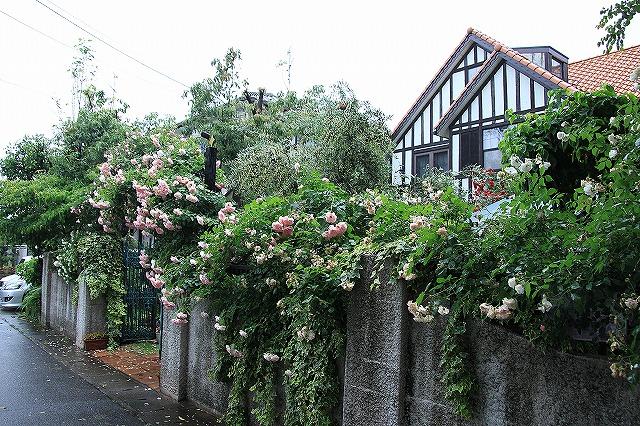 IMG_0893薔薇館