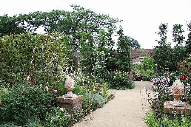 IMG_1260野鳥の森ガーデン