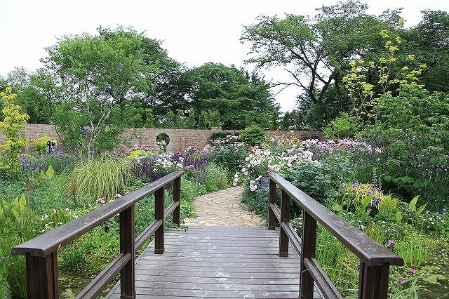 IMG_1292野鳥の森ガーデン