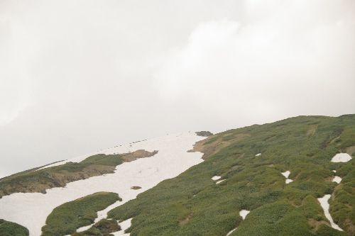 IMGP9657肩のコヤ直下雪渓resized