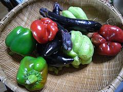 シンワ 土壌酸度計でおいしい野菜