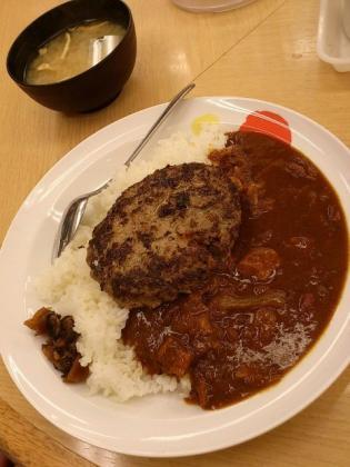 松屋カレー(並)ハンバーグ1