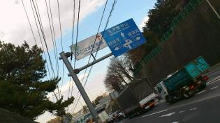 2012.03矢指・追分市民の森(桃の花)11