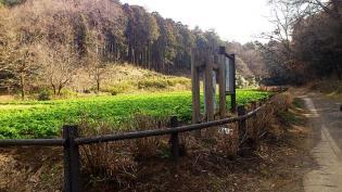 2012.03矢指・追分市民の森(桃の花)2