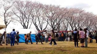 米海軍上瀬谷支援施設 日米親善桜まつり2012 11