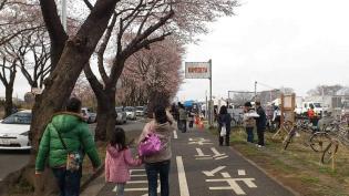 米海軍上瀬谷支援施設 日米親善桜まつり2012 5