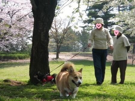 2010_0410_104237-IMG_5498.jpg