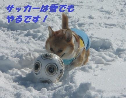 2011_0213_120626-IMG_6443.jpg