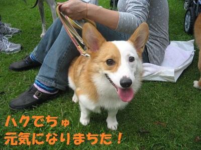 2011_0923_135842-IMG_7072.jpg