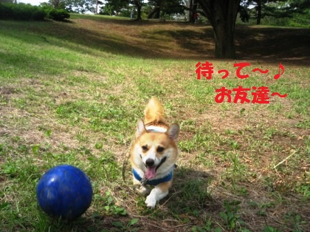 2011_0925_110846-IMG_7073.jpg