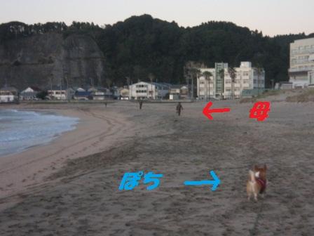 2011_1218_071053-IMG_7802.jpg