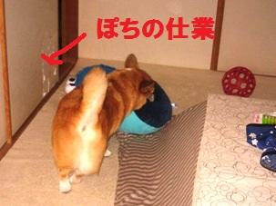 2012_0324_213843-IMG_8479.jpg