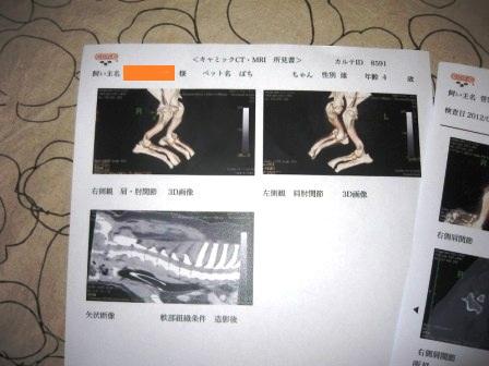 2012_0419_162632-IMG_8683.jpg