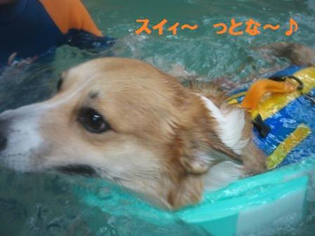 2012_0422_130312-IMG_8717.jpg