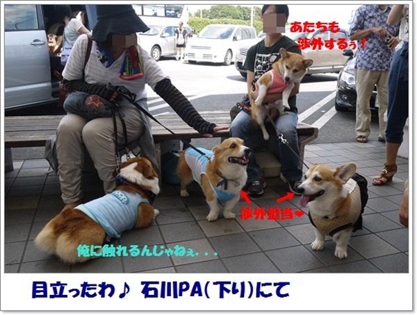 2012_0908_101645-P1010264.jpg