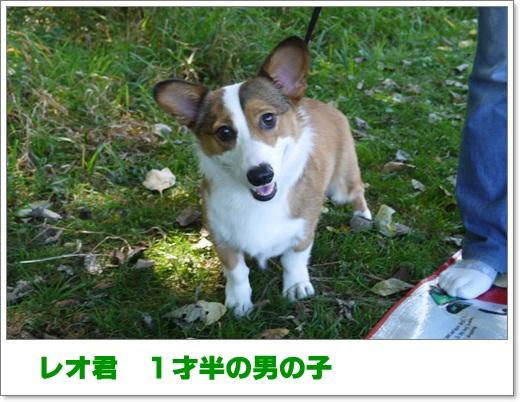 2012_0916_124220-P1010403.jpg