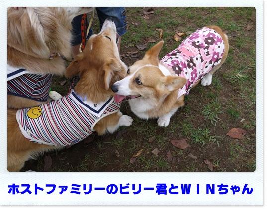 2012_0922_123039-P1010551.jpg