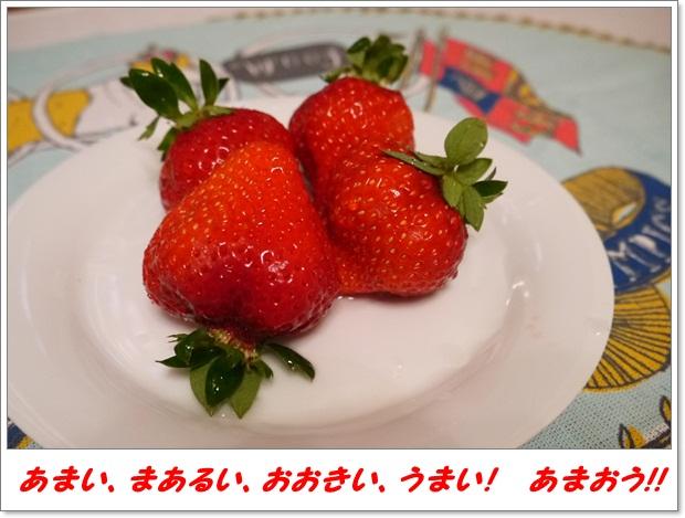 2012_1212_223808-P1020737.jpg