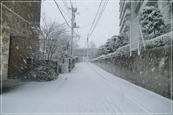 2013_0114_123027-P1030381.jpg