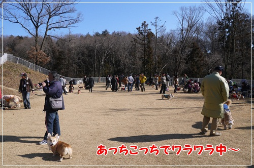 2013_0120_115446-P1030470.jpg