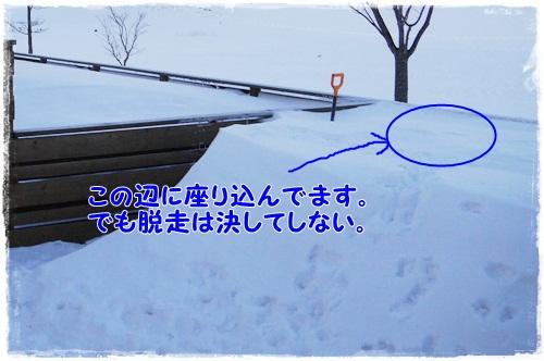 2013_0210_065049-P1030736.jpg