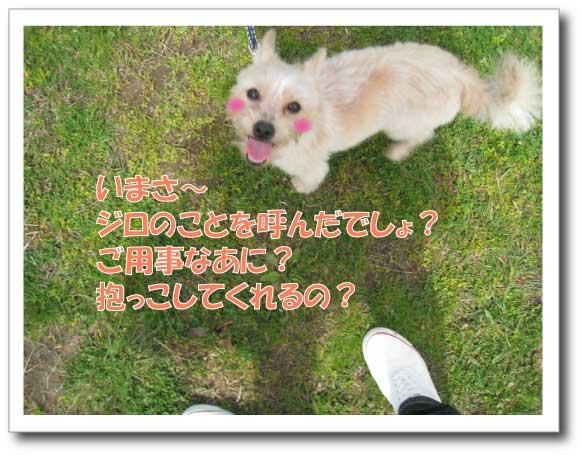 Jirokichi-15.jpg