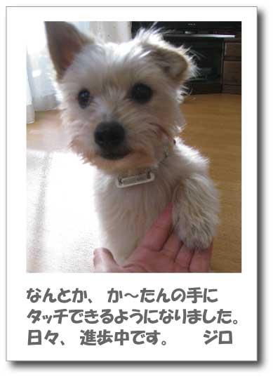 Jirokichi-17.jpg