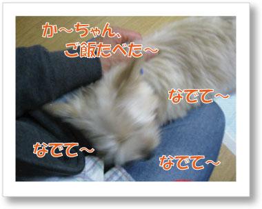 Jirokichi-21.jpg