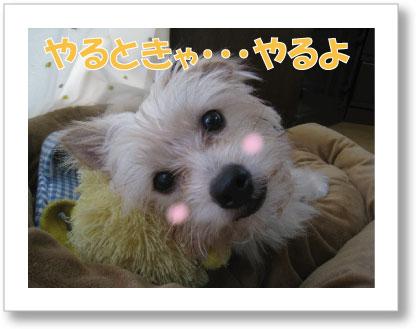 Jirokichi-37.jpg