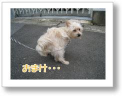 Jirokichi-38.jpg