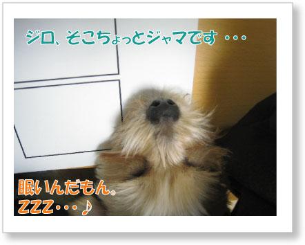 Jirokichi-40.jpg