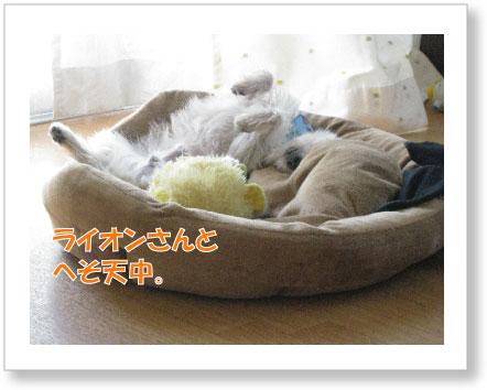 Jirokichi-45.jpg