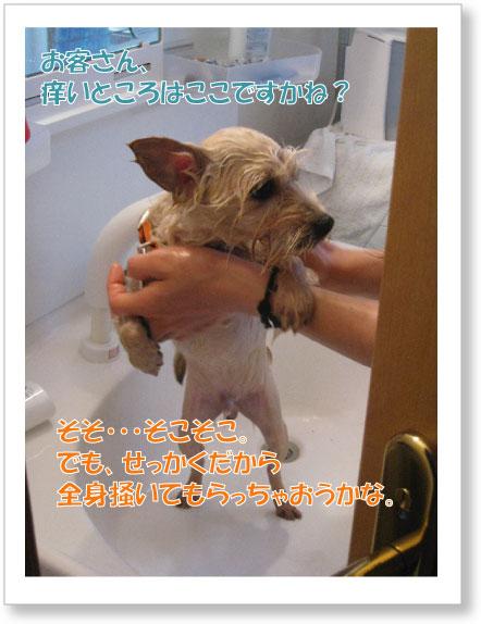 Jirokichi-47.jpg