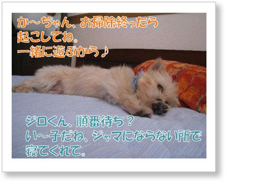 Jirokichi-48.jpg