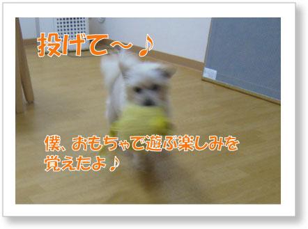 Jirokichi-50.jpg