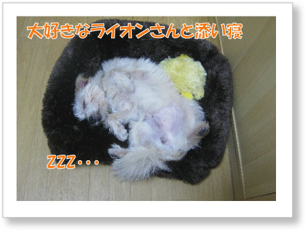 Jirokichi-51.jpg