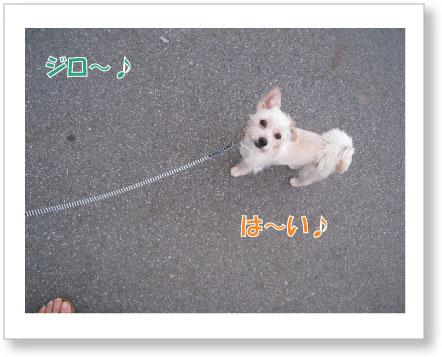 Jirokichi-57.jpg