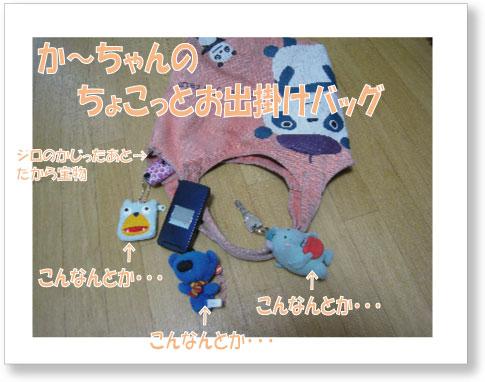 dankichi-151.jpg