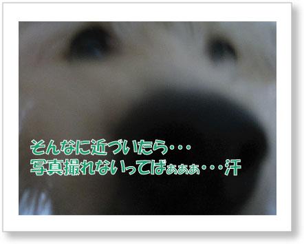 jirokichi-44.jpg