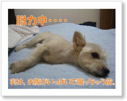 jirokichi-46.jpg