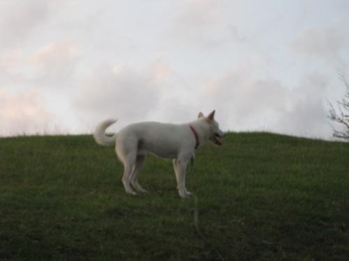 20110813-12.jpg