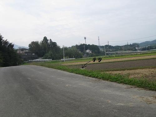 20111030-27.jpg
