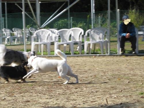 20111120-19.jpg