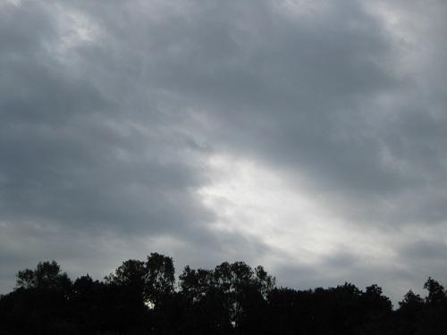 20111123-1.jpg